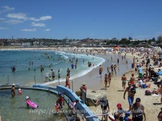 Bondi Beach假日滿滿的人