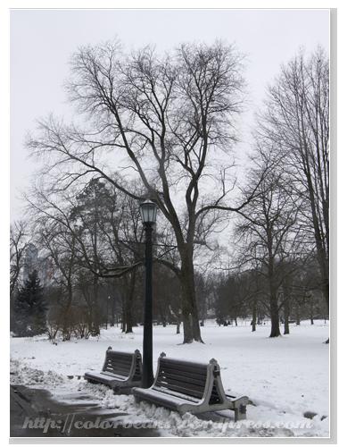 Niagara-Falls 雪景的公園椅子很有fu