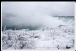Niagara-Falls 河岸的樹都被雪和冰覆蓋了~