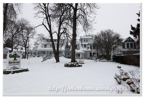Niagara-Falls 民宿和雪白成一片