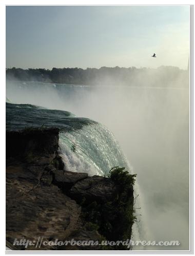 近看Horseshoe Falls
