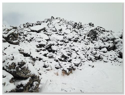 大地都被白雪覆蓋摟
