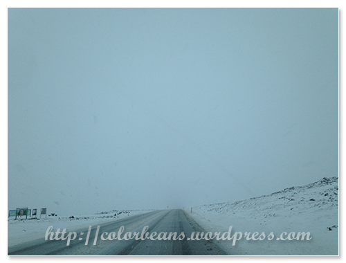 雖然這天沒有下大雪,但中午的時候,還是灰濛濛的