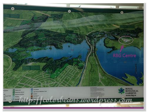 深綠色的面積都是RBG的園區