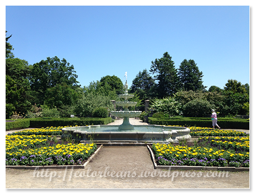 Hendrie Park的小噴泉