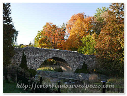 小橋、流水與楓葉~