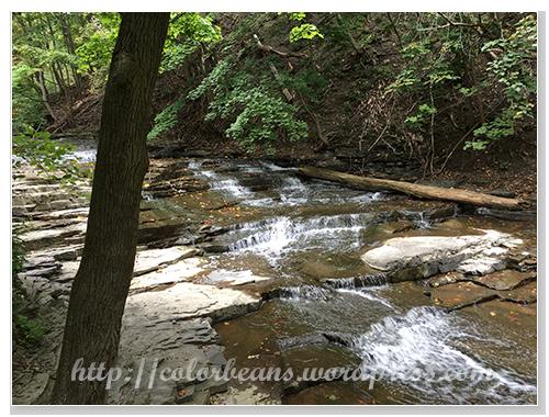 感覺很平靜的小溪