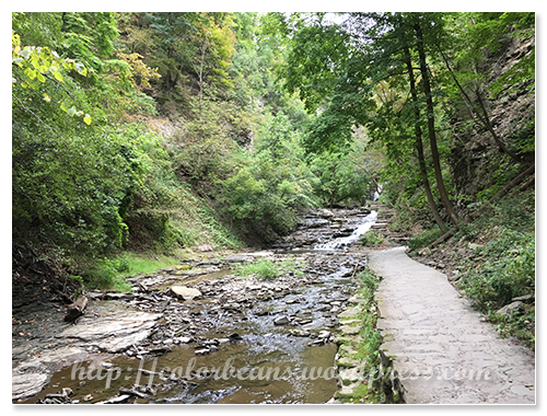 Cascadilla Gorge步道的其中一段