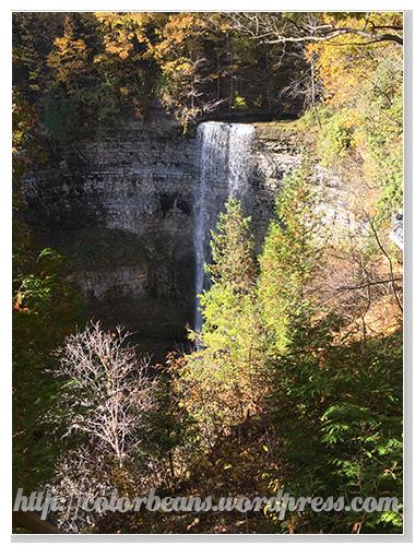 由另一個觀景臺看Tew Falls