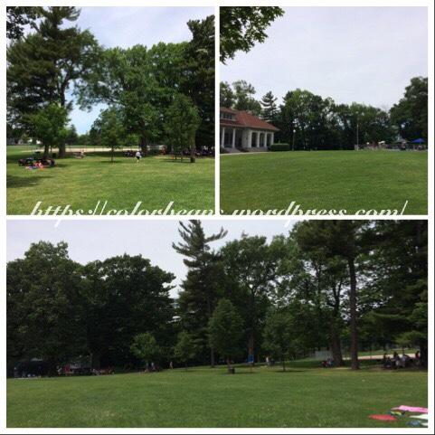 LaSalle Park的草皮