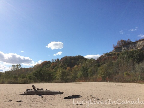Scarborough Bluffs Parks