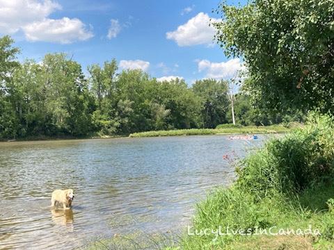 Grand River河畔,耶