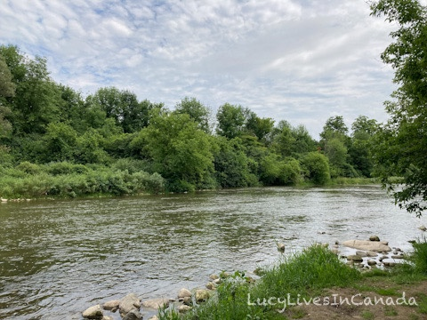 沿著河岸很舒服的